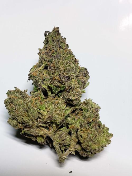 Gelato Strain Cannabis